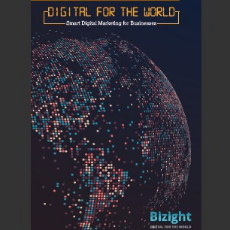 Bizight Brochure